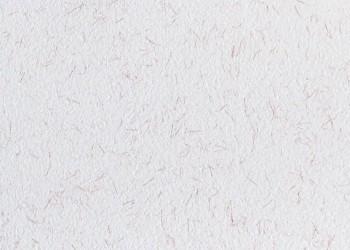 Płynna tapeta PolDecor 22-6