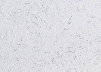 Płynna tapeta PolDecor 22-10